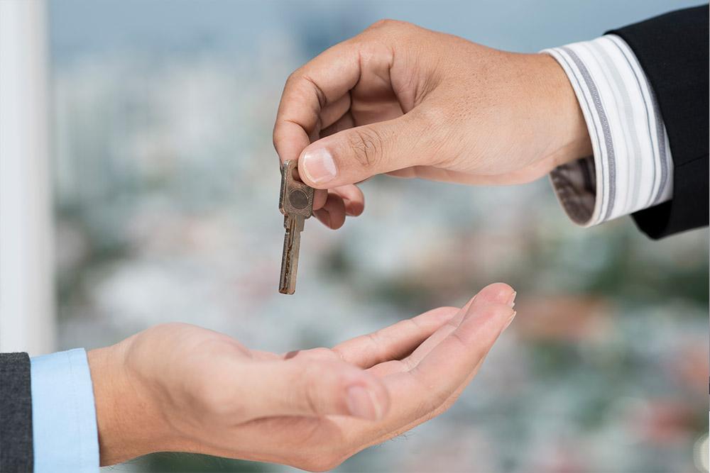 nekretnine-novi-sad